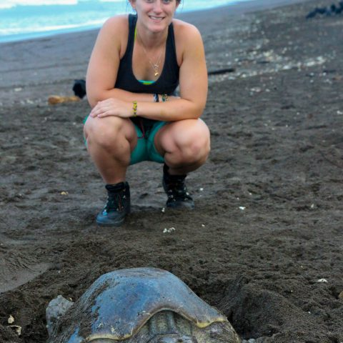 Ali with a Nesting Turtle