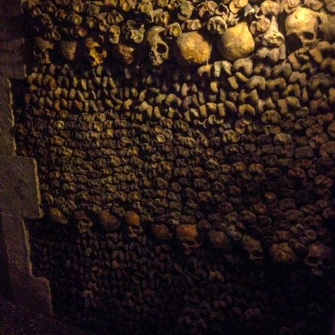 Another Row of Skulls