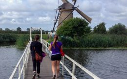 Bridge at the Kinderdijk