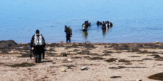 Canadian Scuba Divers on a Beach in New Brunswick