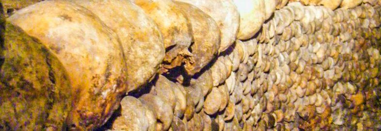 Catacomb Skulls