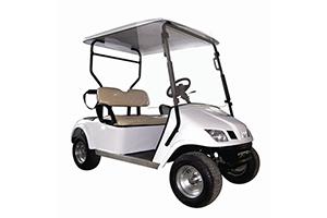 Coco Golf Cart