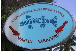 Barracuda Diving Logo