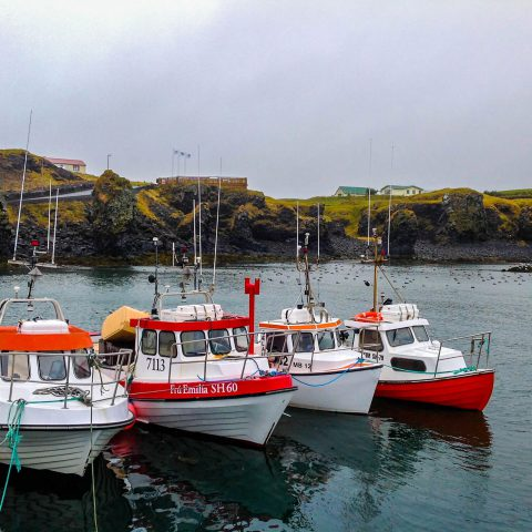 Fishing Boats in Iceland Harbour