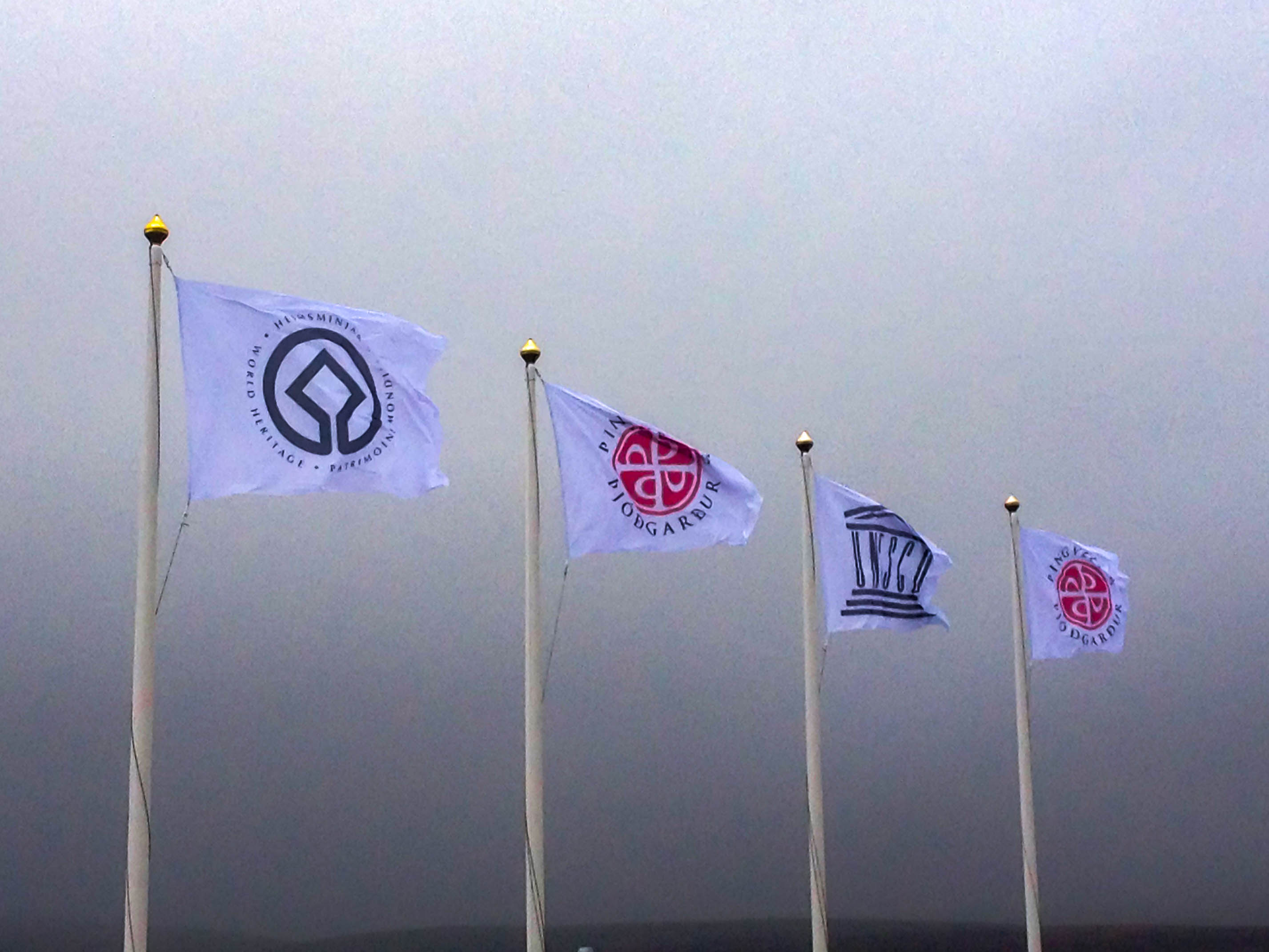 Flags in the Wind in Iceland