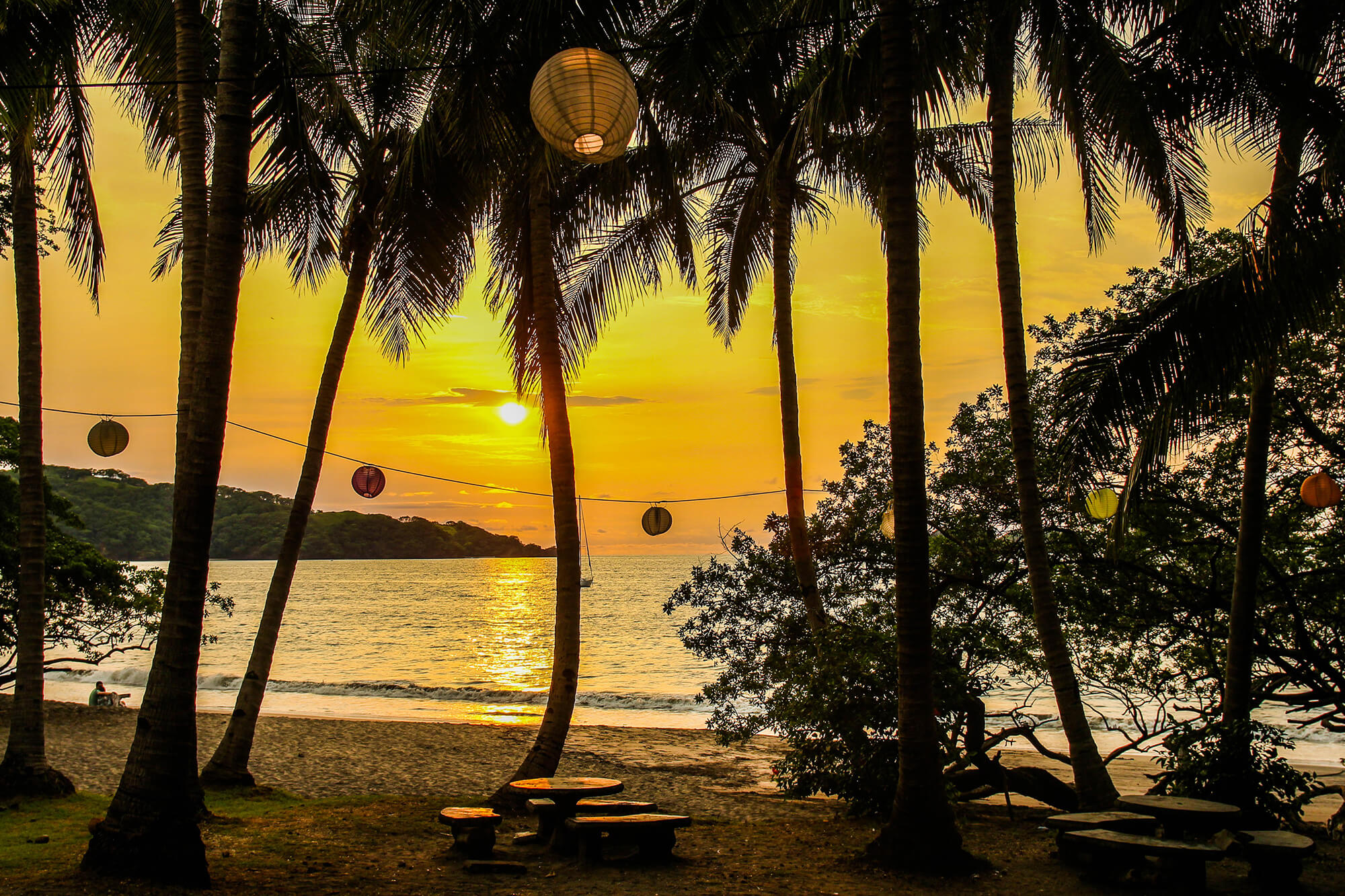Golden Beach with Palm Tree's and Lanterns