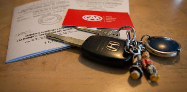 International Drivers License Side