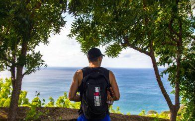 Joey Peeking at the Pacific Ocean