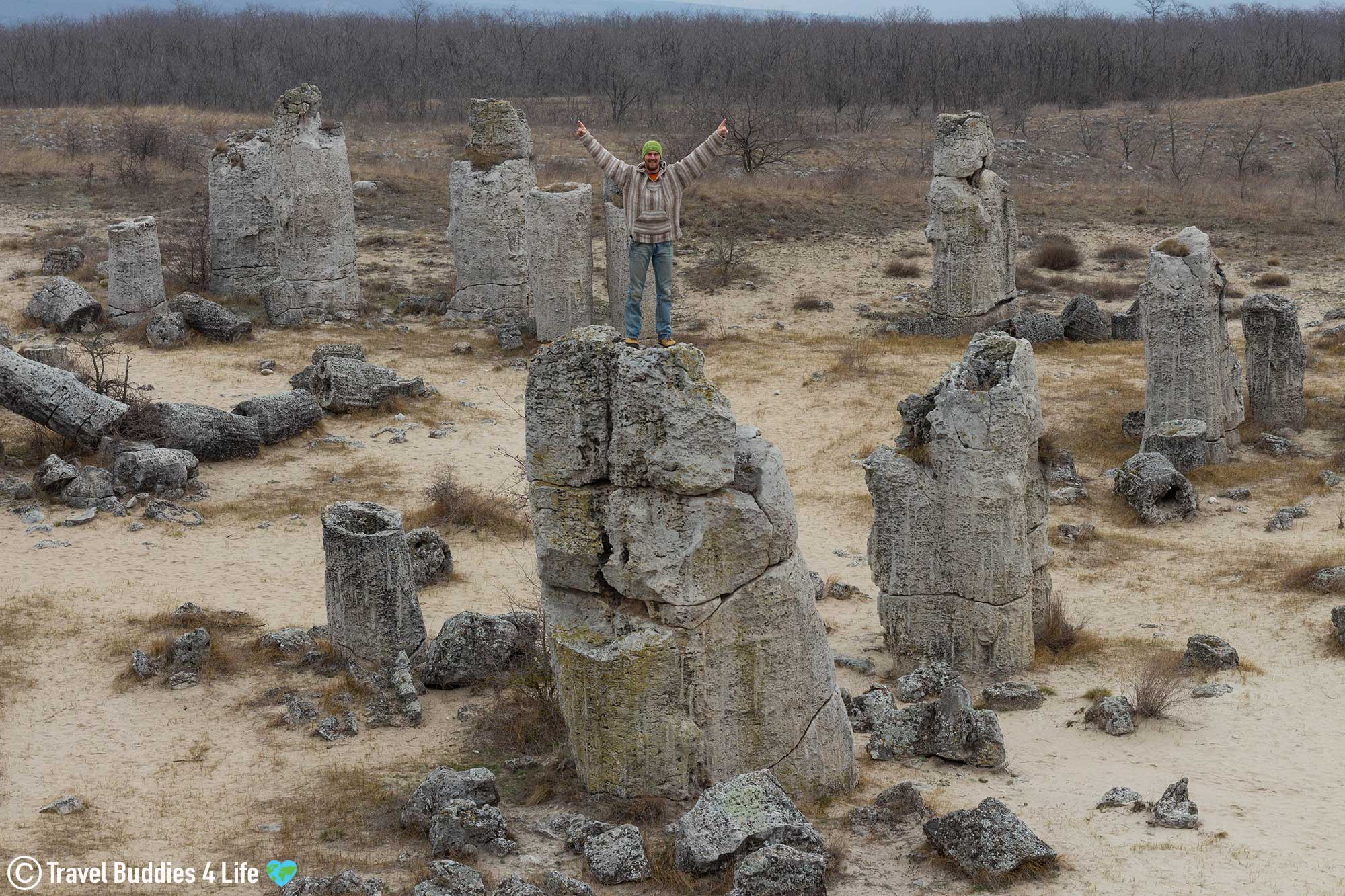 Joey Standing On Top Of A Column Of Rocks At The Stone Forest In Bulgaria, Travel Europe