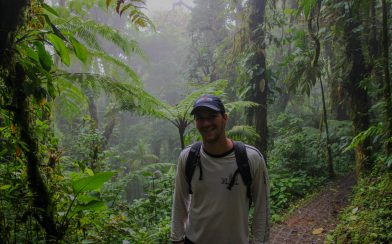 Joey in the Misty Cloud Forest