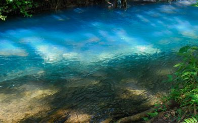 The Meeting of the Clear and Blue Waters in Tenorio National Park