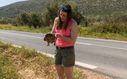 Nadine Rescuing a Tortoise