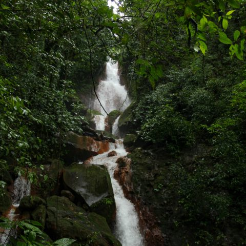 A Narrow Waterfall from our Costa Rican Tour