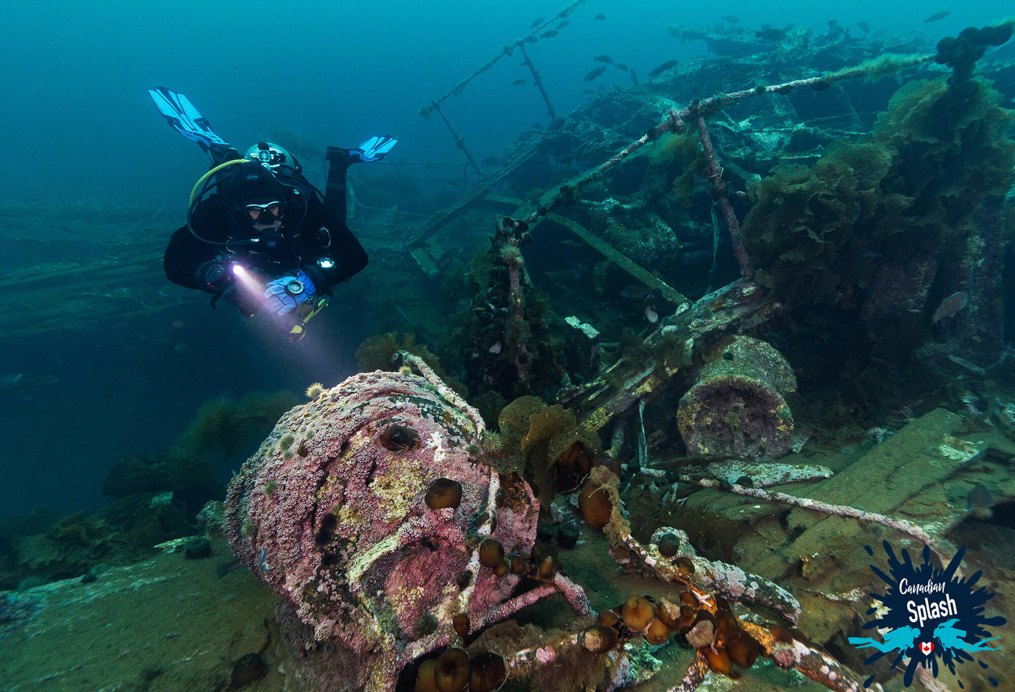 The PLM Shipwreck in Newfoundland