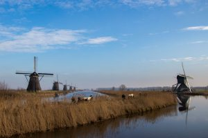 Some Dutch Windmills And People Walking Horses