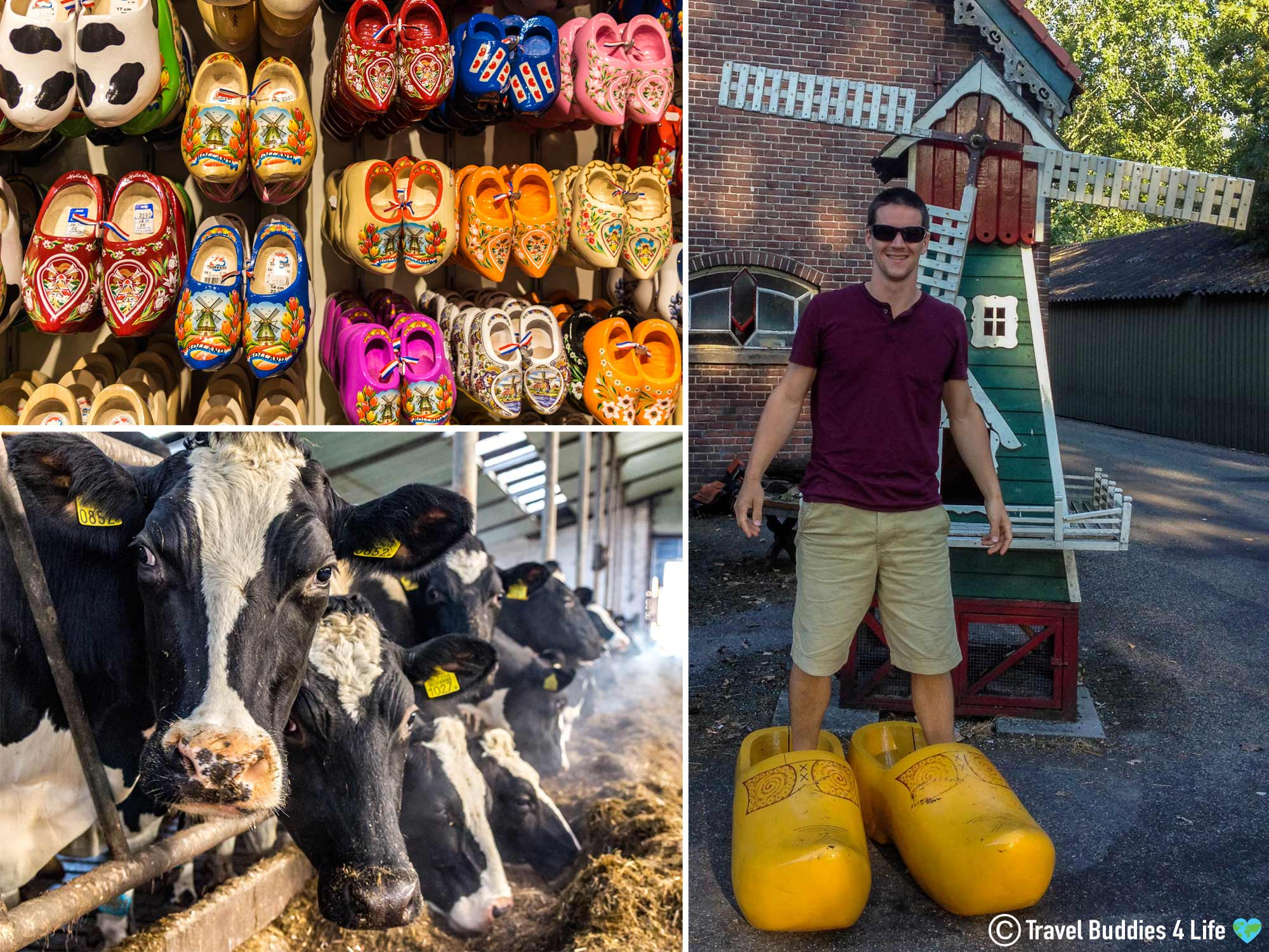The Dutch The Clog And Cheese Shop Of Clara Maria In The Southwest Of Amsterdam, The Netherlands