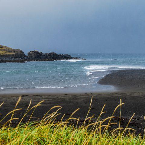 The Rescue Beach