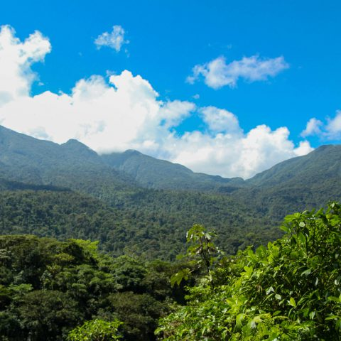 The Costa Rican Volcano Ridge
