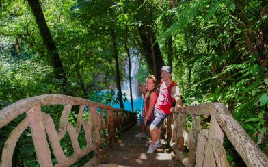 Walking Down to the Rio Celeste Waterfalls in Tenorio Volcano National Park