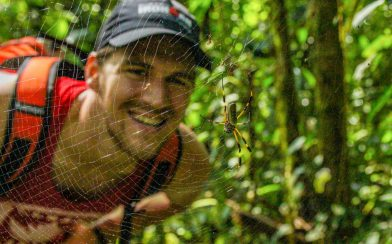 Joey and the Front of a Golden Orb Spider in the Rainforest