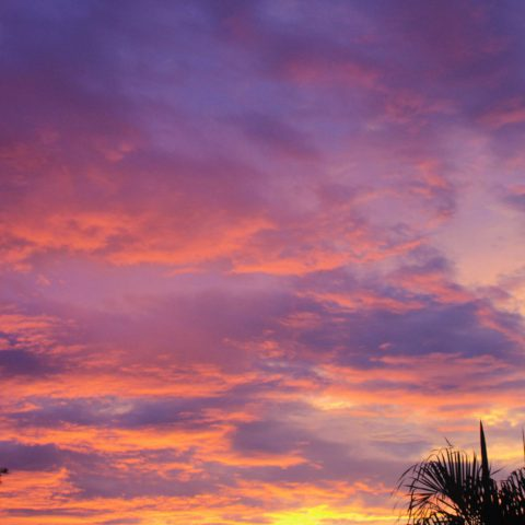 The Purple Sunset from the Condo in Costa Rica